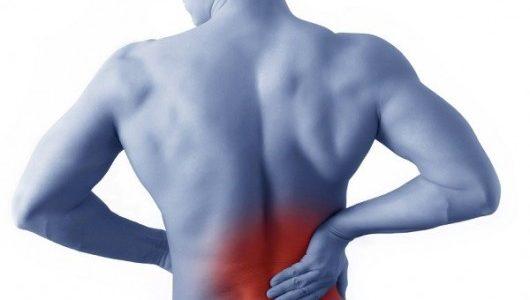 fibromialgia fisioterapia cura